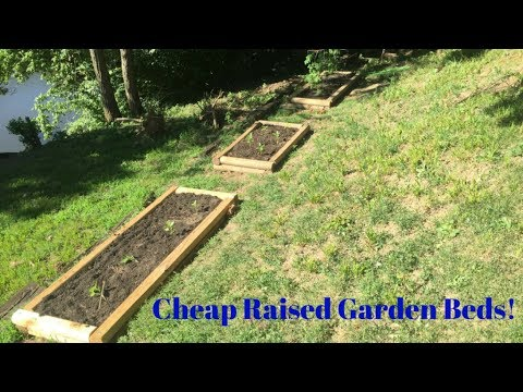 Raised Garden Beds - Extremely Cheap & Easy