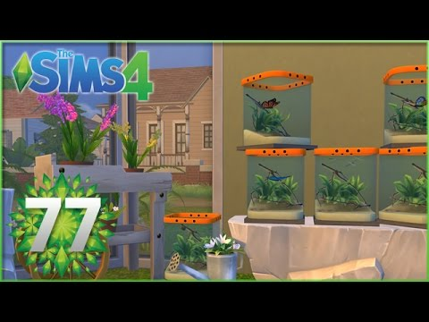 Sims 4: Greening up the Bug House! - Episode #77