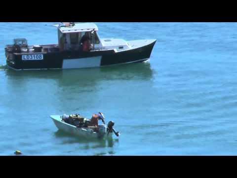Commercial California Spiny Lobster Fishing On The Santa Barbara Coast