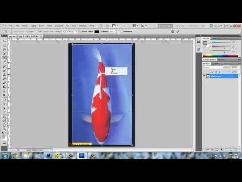 ITGS IA ScreenCast - Graphic Manipulation.mp4