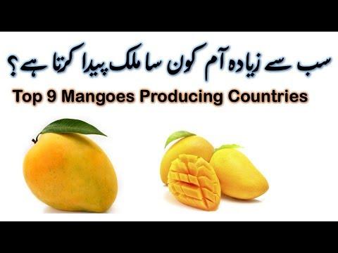 Top 9 Mangoes Producing Countries 2018 | Urdu-Hindi