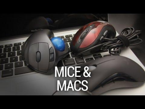 Rettinger's Rants: Of Mice and Macs