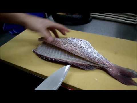 How to cut Sea bream Tai Fish    Japanese Master Chef Kasajima  鯛のさばき方