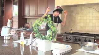 Download Brent's Cooking Show (Sugar Cookies) Video