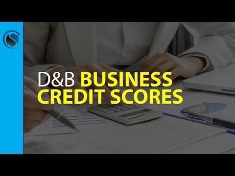 Dun and Bradstreet Business Credit Scores
