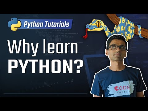 Why Should You Learn Python?