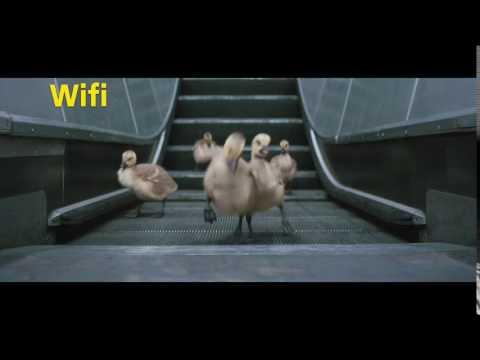 O2 - Free Wifi Calling