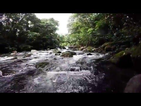 GoPro - Tarzan Swing near La Fortuna Waterfall in Costa Rica