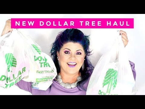 DOLLAR TREE HAUL | NEW GOODIES