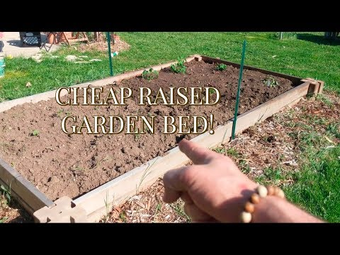 How to Make a Cheap Raised Garden Bed!