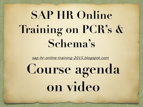 SAP HR Online Training on PCR's and Schema's With Morethan 20 Business Examples  !
