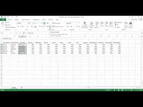 Excel Lesson 6 Indent Cell Contents