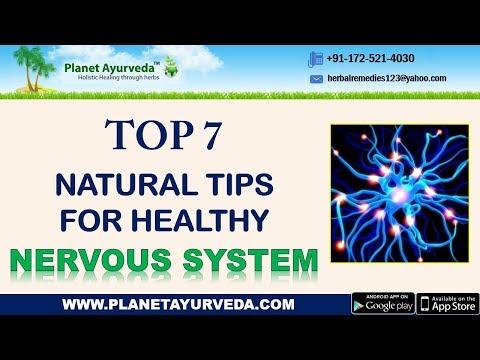Top 7 Natural Tips for Healthy Nervous System | Strengthen Your Nervous System