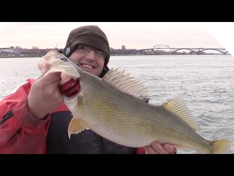 How to Catch Walleye & Lake Trout using Live Minnows on a T-Turn Bait Rig