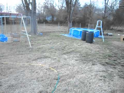 Building a dog kennel cheap