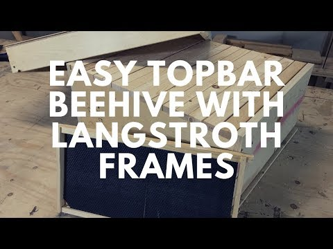 How to make a beehive top bar with langstroth frames, Free Plans