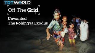 Unwanted, The Rohingya Exodus