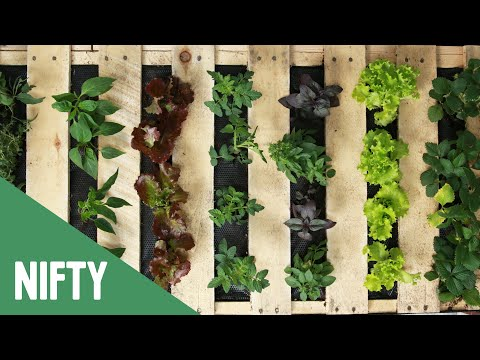 Vertical Fruit And Veggie Pallet Garden