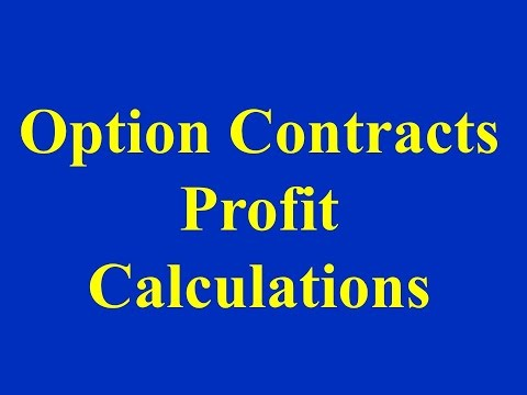 Option Contracts - Profit Calculations