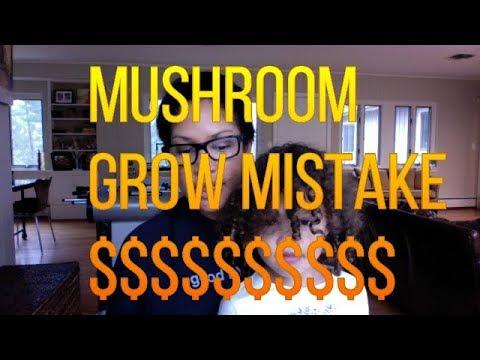 Mushroom Grow Costly Mistake $$$