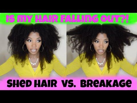 Shedding Hair vs. Breakage - How I Manage