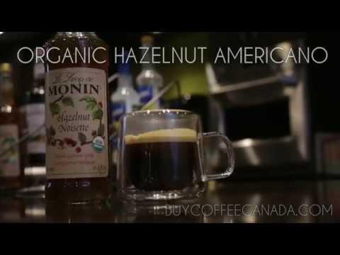 Monin Organic Hazelnut Syrup Americano