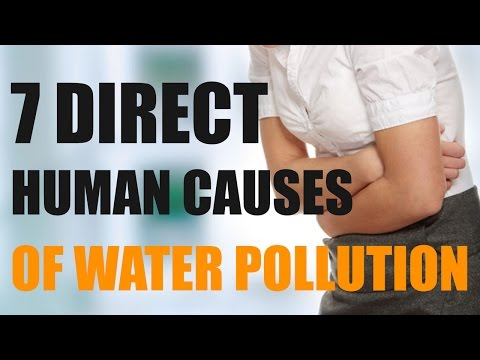 7 Direct Human Causes of Water Pollution