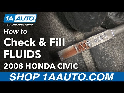 How to Check and Fill Under Hood Fluids 2008 Honda Civic