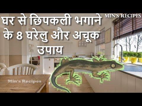 घर से छिपकली भगाने के 8 घरेलु और अचूक उपाय | How to Get Rid of Lizards