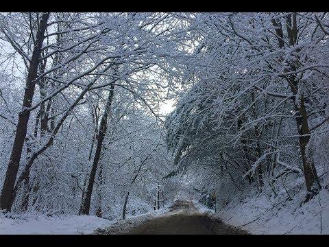 Caribbean Winter?