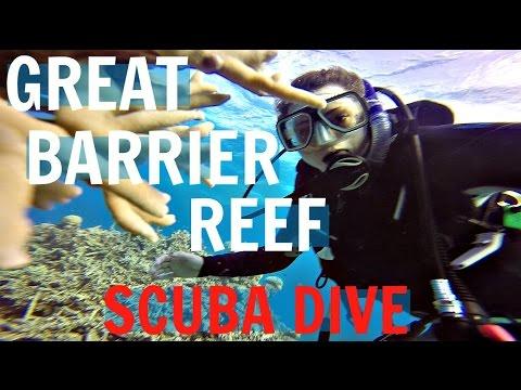 BEST SCUBA TRIP EVER   The Great Barrier Reef, Australia