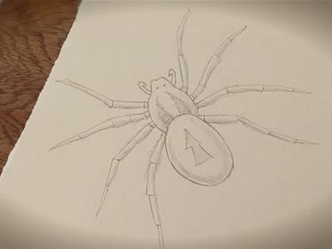 How To Make A Spider Drawing