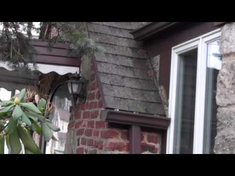 Chappaqua Roof Cleaning - Roof Washing Mold Removal Brick Home