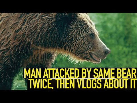 Man Attacked by SAME Bear TWICE, Then VLOGS About It
