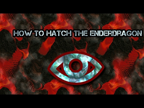 How to hatch the ender dragon egg on, XBOX One, PC, MCPE.