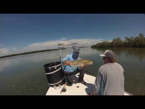 GOPRO: Tampa Bay Fly Fishing | Redfish | Permit | Tarpon | Flyrod only - 2016 - Insane Trip!!