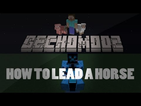 How To Lasso A Horse In Minecraft 1.6.2