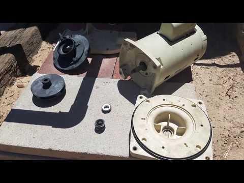 Pentair SuperFlo Pool Pump - Shaft Seal Replacement Tutorial