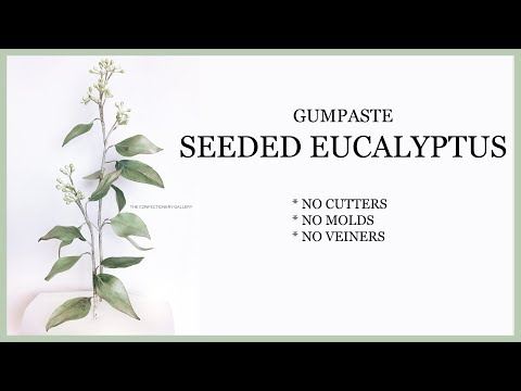 Sugar Paste Leaves and Seeds/Realistic Gumpaste Decorating -NO CUTTERS, VEINERS, MOLDS -  Eucalyptus