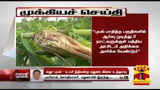 கஜா புயல் : 2 நாட்களில் மத்திய குழு அறிக்கை அளிக்க உயர்நீதிமன்ற மதுரை கிளை உத்தரவு | Cyclone Gaja