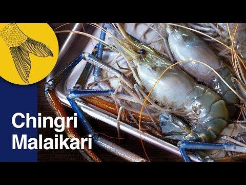 Chingri Malaikari Recipe—Bengali Prawn Malai Curry—Bengali Prawn Curry—Noboborsho Special