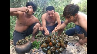 Cooking Snail on Rock - Searching Snail Cook For Food Eating delicious