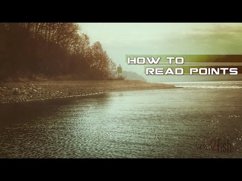 How to Read and Fish Points for More Bass