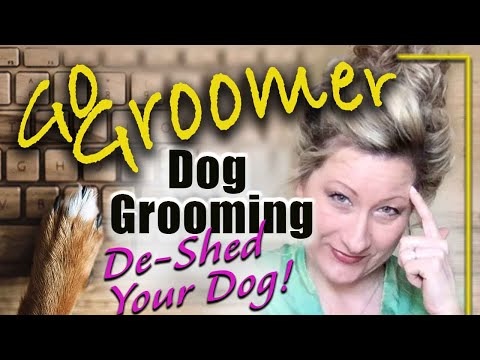 How to keep your dogs undercoat in check!