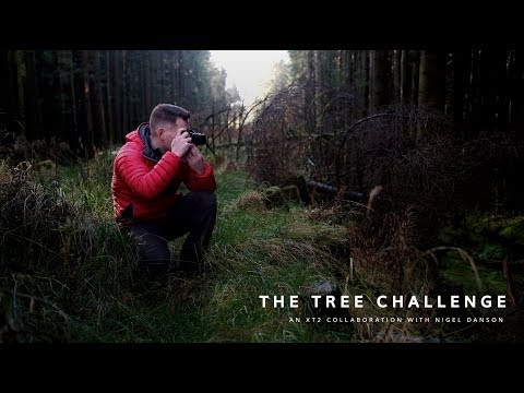 The Tree Challenge - Epic Fail