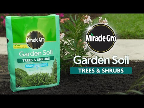 How to Use Miracle-Gro® Garden Soil for Trees & Shrubs