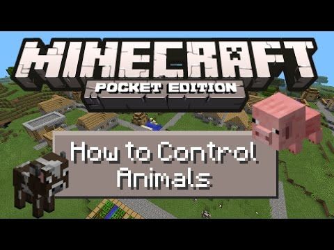Minecraft PE - [0.9.0] How to Control Animals Paths