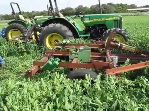 Wide Blade Cultivator - Green Manure Termination