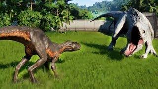 INDORAPTOR MAX Vs ALL CARNIVORE DINOSAURS - Jurassic World Evolution
