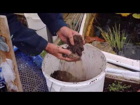 Leafmould to seed compost